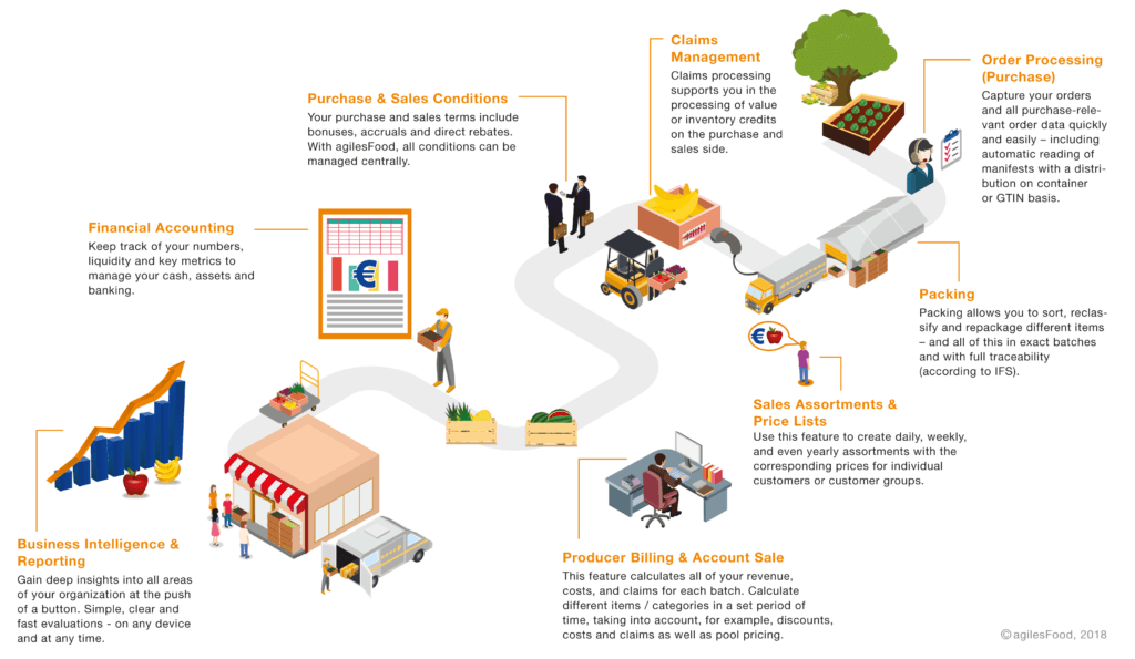 Graphic-ValueChain-Food-WEB-en_big-1-1024x595.png