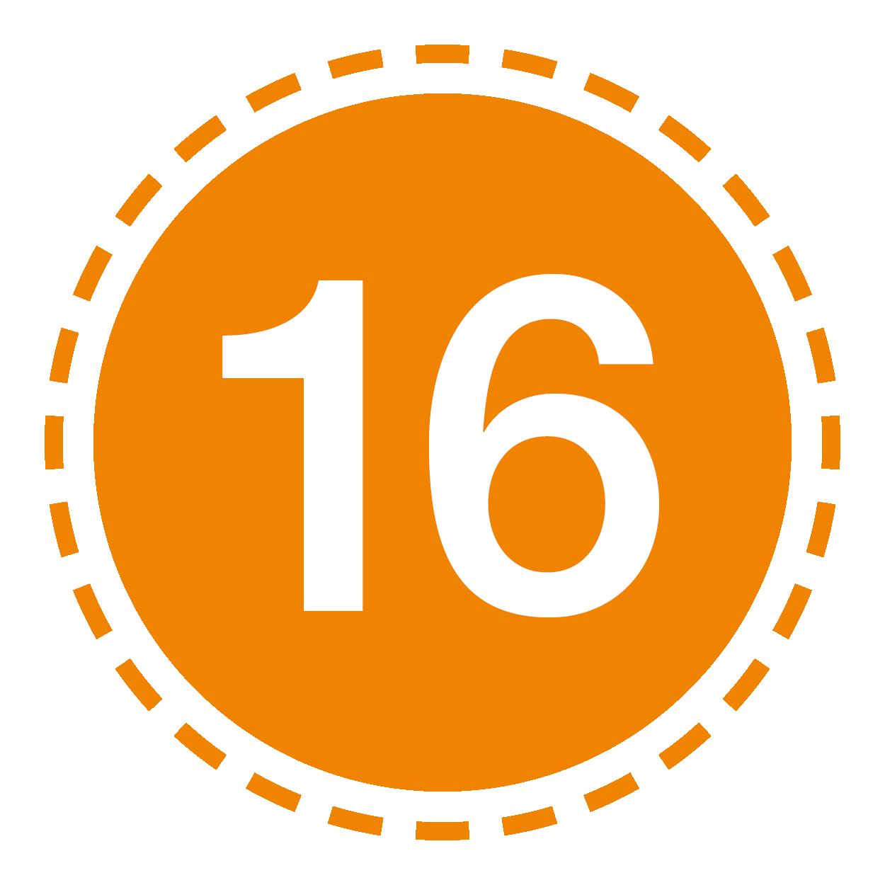 Icon17